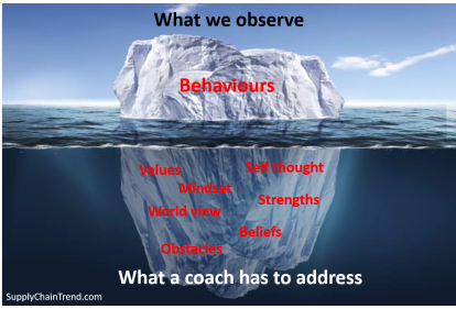 Coaching behaviours v2