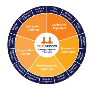 Truebridges Strategy Alignment Framework v3 16 oct 2015